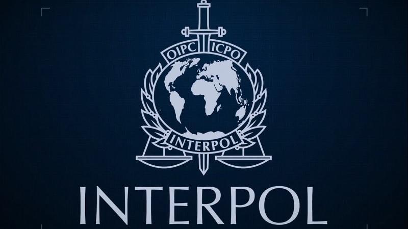 Interpol Italian