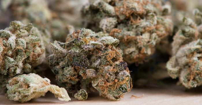 irish marijuana